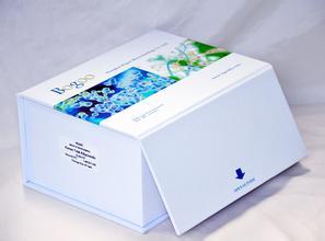人聚集蛋白(Agrin)ELISA试剂盒品牌
