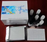 白介素ELISA试剂盒,人白介素10(IL-10)ELISA试剂盒价格
