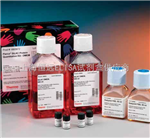 NQBB、GIBCO、HYCLONE标准胎牛血清