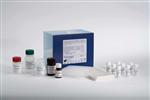 人腺病毒抗原(ADV-Ag)