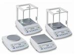 千分分析天平 上海精密电子天平 电子天平型号和价格