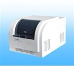 国产实时(48孔)光定量PCR基因扩增仪 PCR仪厂 基因扩增仪原理