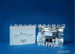 人PDH E1 ELISA试剂盒