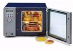 进口瑞士Salvis 真空干燥箱|进口真空干燥设备价格