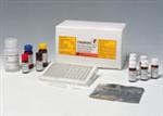 呼吸道合胞病毒抗�w(IgG\IgM)