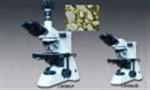 正置金相显微镜