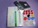 莱克多巴胺检测试纸条(尿样)