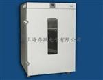DHG立式恒温鼓风干燥箱