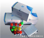 犬肌钙蛋白Ⅰ(Tn-Ⅰ)ELISA试剂盒