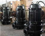 上海鄂泉WQS150-65-55双吸式排污泵