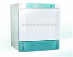 人工气候箱价格/人工气候箱的价格/RGX-150B人工气候箱