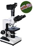三目生物显微镜,数码生数物显微镜,实验生物显微镜使用方法