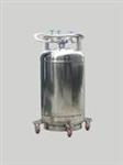 自增压式液氮容器罐,大口径液氮罐型号,液氮罐使用
