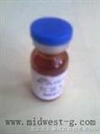 肝  C0077