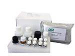 人免疫球蛋白(IgM)ELISA试剂盒