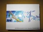 犬转移生长因子β1(TGF-β1)ELISA试剂盒