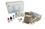 孕酮(Progesterone)放免试剂盒检测服务
