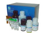 大鼠CD4分子(CD4)elisa试剂盒