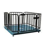 围栏秤5000公斤,2T可冲洗式带围栏秤