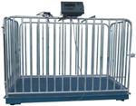 带围栏动物秤带围栏动物秤,围栏秤3吨