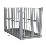 3吨带围栏动物秤,犊牛围栏秤