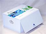 人甘露糖结合蛋白/甘露糖结合凝集素(MBP/MBL)ELISA检测试剂盒