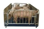 3T-1.5m×2m牲畜秤,牲畜地磅秤