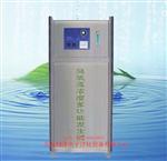 遊泳池水處理臭氧發生器