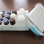 白介素1β,绵羊白介素1βELISA试剂盒