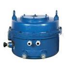 361RSB-20电动执行器供电220V
