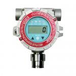 RAEGuardS EC 有毒气体检测仪