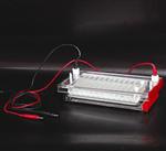 DYCP-44N型快速凝胶电泳仪(槽)厂商含税报价