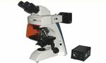 生物荧光显微镜价格,荧光显微镜使用方法