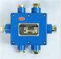 JHH-6型矿用本安电路用分线盒,JHH-6接线盒,矿用电路用分线盒