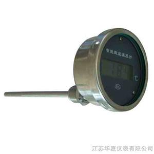 HXJ轴向型数显温度计