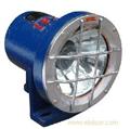 DGC60/127B防震照明灯,60W防震机车灯,60W机车灯