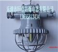 DGS12/127L(A)巷道灯,矿用LED巷道灯