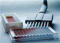 进口人CC趋化因子受体elisa试剂盒