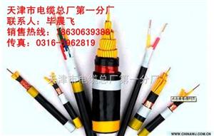 供应-电话电缆ZR-HYA53