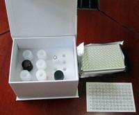 RGD,BIM兔RGD三肽酶联免疫试剂盒厂家
